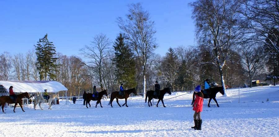 Zimowisko z jazdą konną - runowo - obóż zimowy dla dzieci
